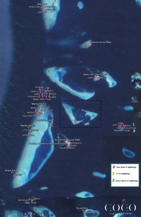 Map of inhabitant turtles at the 14 snorkeling and diving sites we are surveying in the North Male atoll